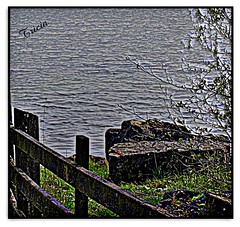 The Lake (Patricia Speck) Tags: wood lake tree water grass wales fence rocks stones branches ripples tricia patricia hdr speck brynbachpark brynbachparkswalesuk
