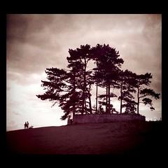 Walkers on hilltop