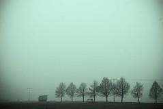 Verkehr (Dirk Dietrich) Tags: road wet fog nebel grau trist nass stromleitungen monoton berlandleitungen orientierungslos