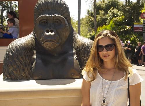 me w gorilla