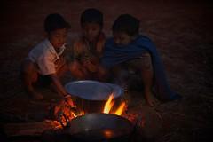 201102124_Tadros_India_5361 - Version 2 (ingetje tadros) Tags: people festival portraits community tribal event tribes indigenous realpeople ingetjetadros