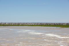 Lake Pamamaroo filling (Patrick Keogh) Tags: menindee newsouthwales australia au