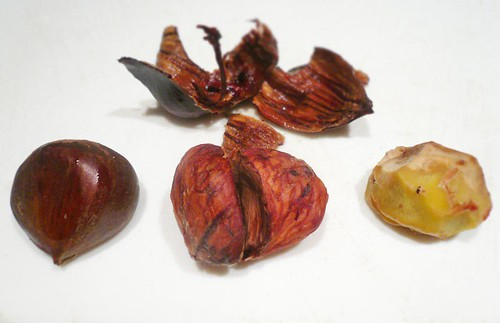 whole, shelled and trimmed chestnut