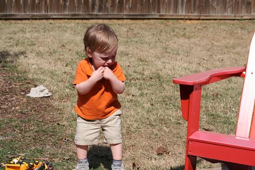 Backyard 3.22.2011