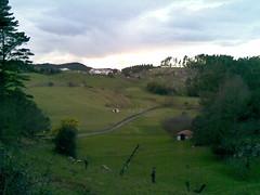 20090205(008) (naialaka) Tags: natura basoa belarra baserria berdea paisajea