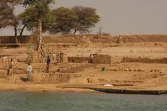 West Africa-5004