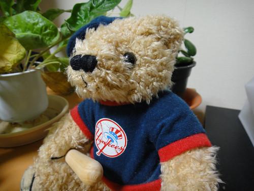 17CD Bear