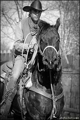 DSC_4582 (andreacatenaccio) Tags: horse photo andrea fotografia cavalli fotografo voghera catenaccio cowboyland
