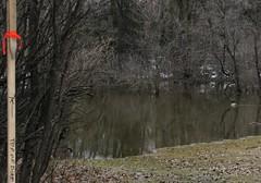 N. Kildonan Flooding