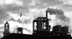 Industrial Silhouette (Light Collector) Tags: bw ontario canada collingwood air odt theelements