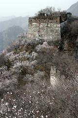The Great Wall (Nestosjp) Tags: china wall beijing greatwall muralla peking granmuralla nestosjp murralla