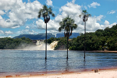 cainaima-brunogalens-Venezuela (Thomas Cook Belgium) Tags: nature water america relax vacances eau venezuela sable natuur zomer latin tropical t animaux dieren luxe zand vakanties aventure avontuur tropisch belleplage mooistestranden reisperiode priodedevoyage