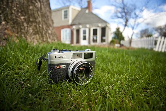 Canonet Grazing