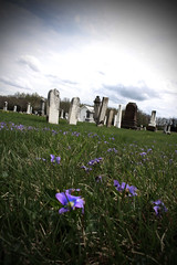 (britney;alexis) Tags: old flowers usa art grave graveyard grass contrast canon dead death spring remember dof sad purple grim pov rip tomb perspective funeral desaturated manual remembrance dying tombstones couds washedout 2011 passedaway project365 365project vinnette cemeterysad