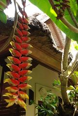 Alam Asmara (Cadu ) Tags: voyage trip bali indonesia viagem spa viaggio pousada indonesie candidasa alamasmara