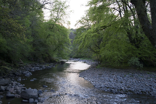 The river between Catrine and Mauchline