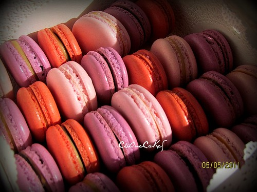 5th May Macarons