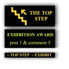 ~ TOP STEP UP ~ EXHIBITION AWARD