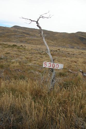 20100418084