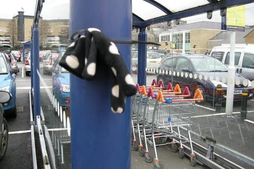 Huddersfield Sainsburys 110215 1352 by MollsMusings