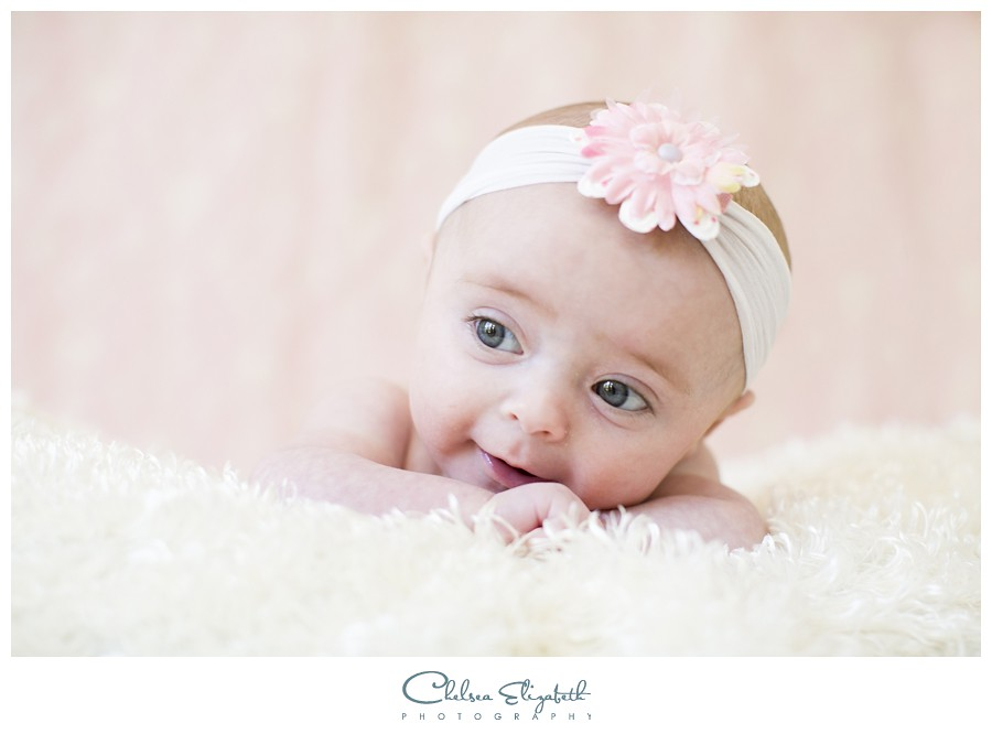 newborn portrait damask background