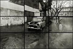 TALCA VACA / Mini (ORANGUTANO / Aldo Fontana) Tags: park city houses urban streets cars cemetery nikon flickr d70 nikond70 aldo fontana fotoensayo maule thephotoessay orangutano aldofontana