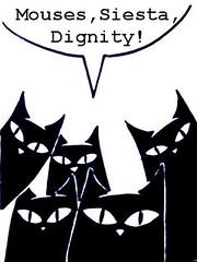 cat mob