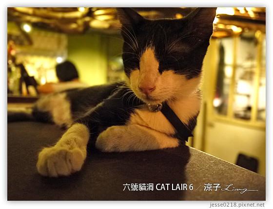 六號貓洞 CAT LAIR 6 9