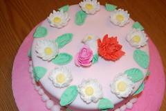 Final Cake gumpaste and fondant class (Rhonlynn) Tags: flower wilton fondant gumpaste cakeclass