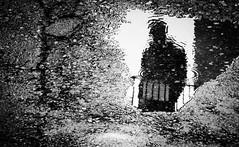follow (fenta88) Tags: reflaction reflexion street rainy blackandwhite