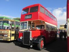 PMT L466 NEH466 Donington Park Circuit attending Showbus 2016 (1280x960) (dearingbuspix) Tags: 466 preserved showbus showbus2016 pmt potteriesmotortraction l466 neh466