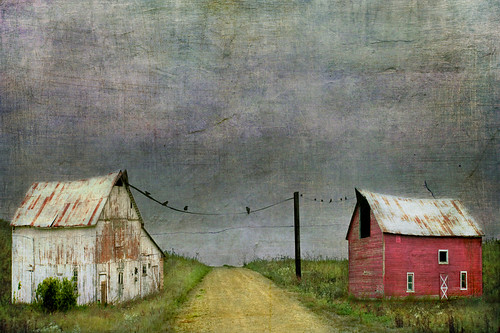 Working Neighbors by jamie heiden