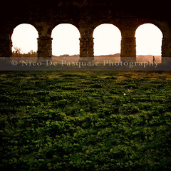 """Limiting your choices only to what seems possible or reasonable, disconnect yourself from what you truly want, and all that is left is compromise."" (** Nico **) Tags: old italy man rome history grass silhouette canon square arch roman aqueduct gettyimages nicodepasquale whatgettywants gettyimageswants gettywants"
