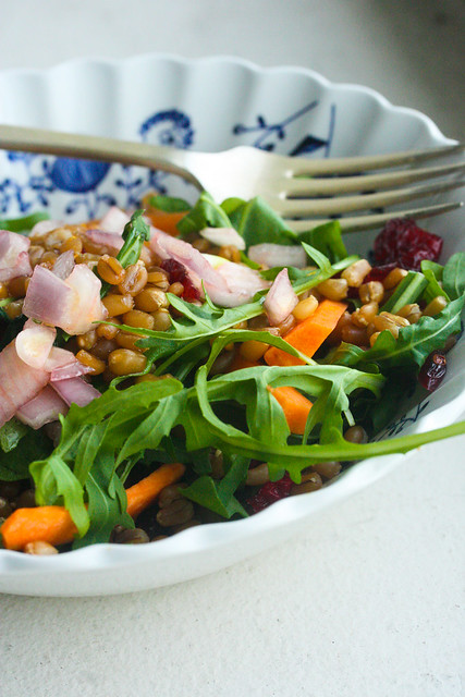 Wheat Berry Citrus Salad 3 (1 of 1)
