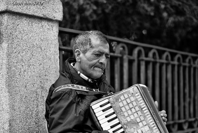 Musico de palacio