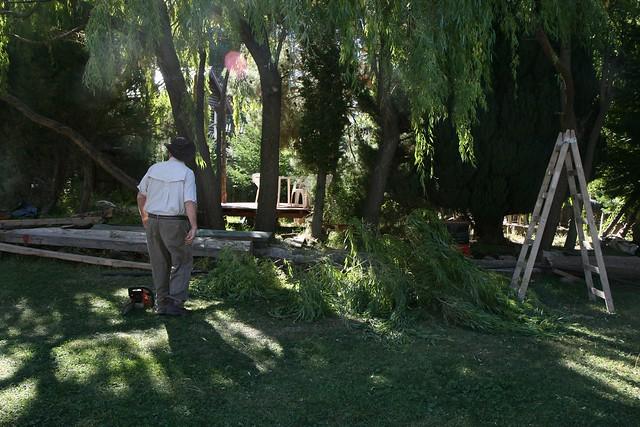 dad-garden