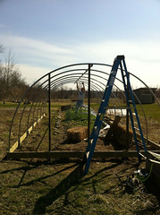 Installing the hoop house spine