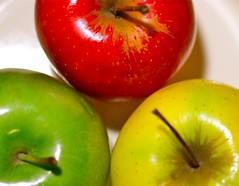 Eves Choice (JustaMonster) Tags: eve red macro green yellow nikon health apples tamron90mm d7000 odc2 ourdailychallenge exactly3colours deliciousandjuicy
