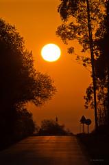 Driving is fun   [Explored - Apr 11, 2011] (Ahio) Tags: road sun sol sunrise explore amanecer risingsun smcpentaxda300mmf40edifsdm