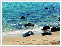 Wonderful Moments of Sunshine // Jungmun Beach // Jeju-do // The Island of Jeju // South Korea (|| UggBoyUggGirl || PHOTO || WORLD || TRAVEL ||) Tags: birthday girls people dublin streetart men cars amsterdam architecture breakfast dinner lunch bathroom hongkong mercedes airport bed rooms traffic candid watch transport landmark facades taxis explore more frenchtoast icecream seoul bmw parkhyatt taipei taipei101 ritzcarlton kia suite klm cocktails hyundai jeju icc schiphol taoyuan buddhisttemple grandhyatt roomservice bentley aerlingus intercontinental incheon coex lotte discover gimpo cathaypacific terminal2 hyattregency bongeunsa evaair teddybearmuseum citygate koreanair shilla regenthotel irishlove jungmunbeach regencyclub irishpride irishluck grandclub whotelhongkong thesherwoodhotel eliteconcepts