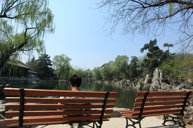 Spring Scenery in Tsinghua University