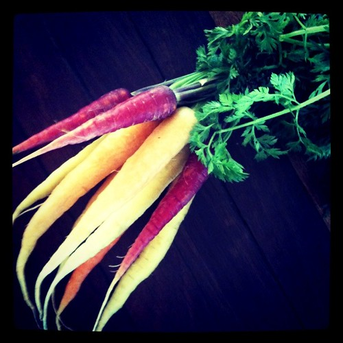 Coloured carrots!