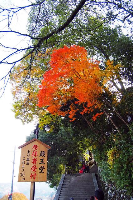 20101120_141257_吉野山_金峯山寺