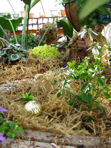 Fairy Garden Profile