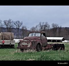 GMC rust (Stephanie Calhoun Photography) Tags: rural truck rust pennsylvania farm jerseyshore oldgmc nippenosevalley