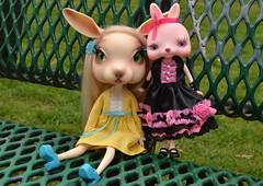 happy easter from the bunnehs! (cybermelli) Tags: rabbit bunny japan easter toy doll eyelashes vinyl bjd maryjanes estella tokissi