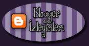 180- bloggerizleyicileri