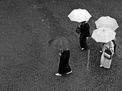 Kyoto Umbrella3 (Hissyh2) Tags: people blackandwhite japan pen kyoto olympus olympuspen   ep1