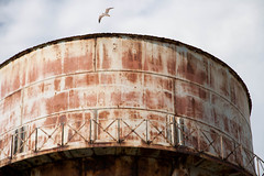 "Water Tower and Seagull, Alcatraz, California • <a style=""font-size:0.8em;"" href=""https://www.flickr.com/photos/54899285@N06/5662996148/"" target=""_blank"">View on Flickr</a>"