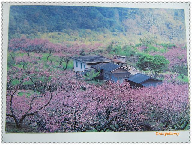 110418 來自台東的明信片-01